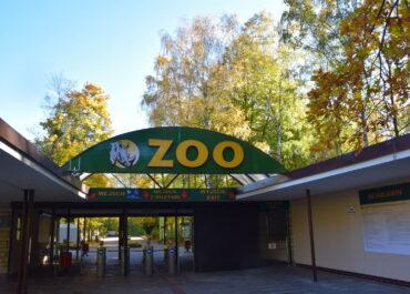 Zoo Poznań od dziś czynne dłużej