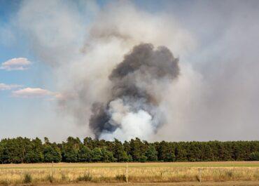Pożar lasu w Wielkopolsce!