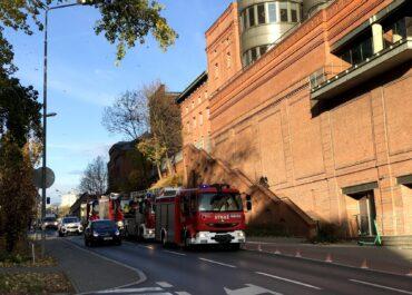 Pożar drzewa przy Starym Browarze
